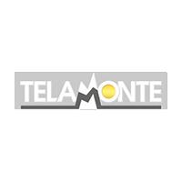 Telamonte